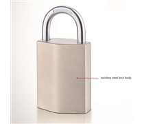 stainless steel smart lock