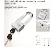 brass padlock(cylinder case can be replaced)
